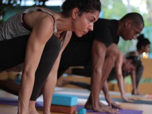 abhijna-school-of-yoga-200-hour-ashtanga-hatha-and-yoga-therapy-training-kerala-india-52_orig