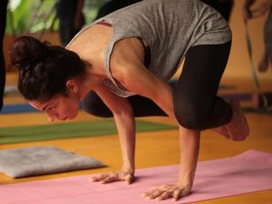 abhijna-school-of-yoga-200-hour-ashtanga-hatha-and-yoga-therapy-training-kerala-india-82_orig